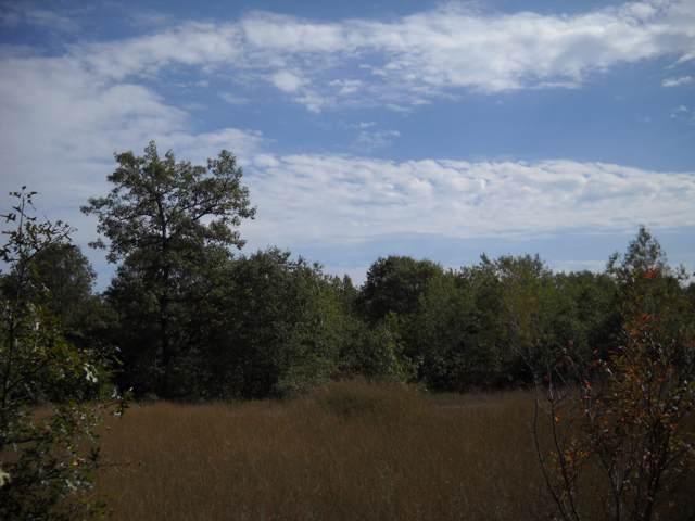 0 Timber Lane, Lewiston, MI 49756 (MLS #321500) :: CENTURY 21 Northland