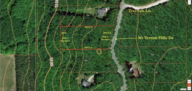 6772 Mt Vernon Hills Drive, Vanderbilt, MI 49795 (MLS #323206) :: CENTURY 21 Northland