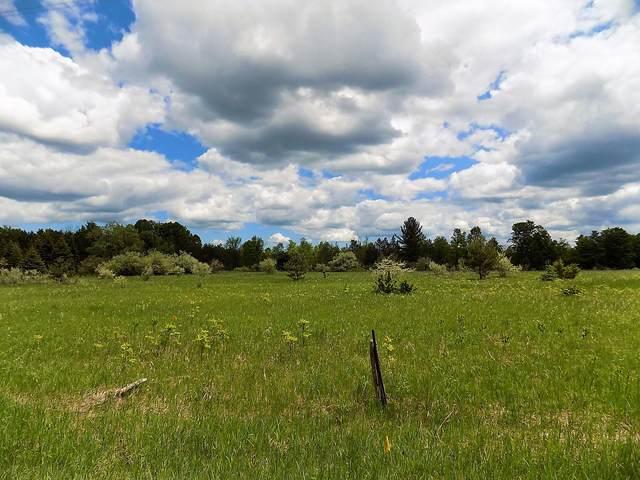 Klein Road, Hillman, MI 49746 (MLS #324177) :: CENTURY 21 Northland