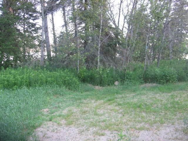 116 Lake Shore Drive, Lachine, MI 49753 (MLS #324714) :: CENTURY 21 Northland