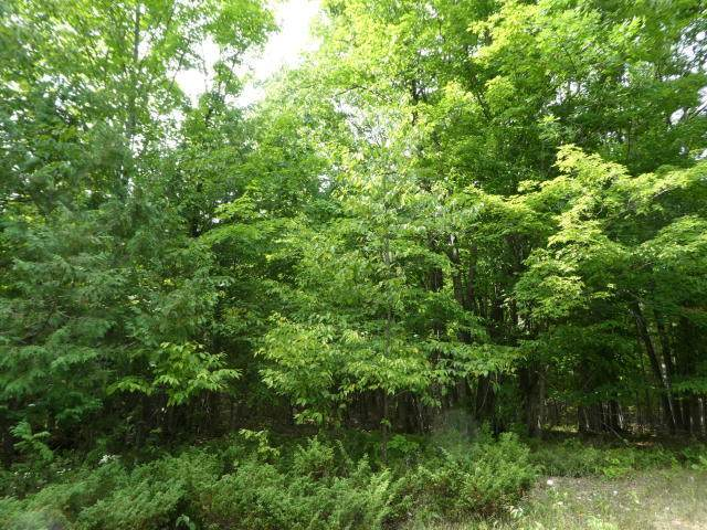 Highland Pines Road, Alpena, MI 49707 (MLS #324884) :: CENTURY 21 Northland