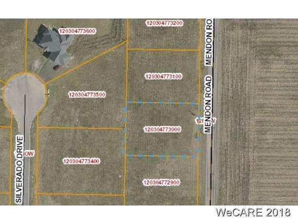 TBD Mendon Road, Van Wert, OH 45891 (MLS #107981) :: CCR, Realtors
