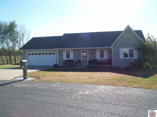 273 Chad Dr, Mayfield, KY 42066 (MLS #100059) :: The Vince Carter Team