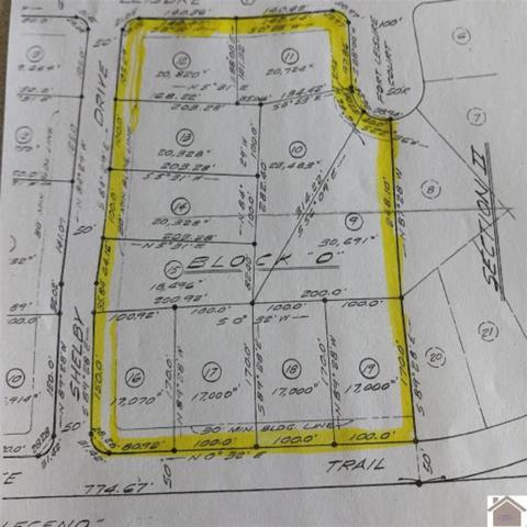404 Fort Leisure Trail, Gilbertsville, KY 42044 (MLS #100144) :: The Vince Carter Team