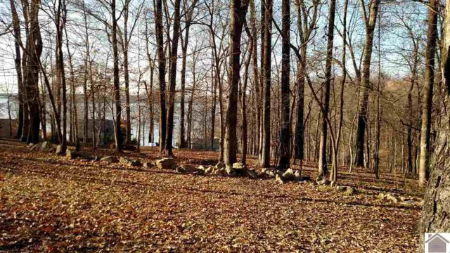 Lot 65 Rolling Mill Road, Eddyville, KY 42038 (MLS #100258) :: The Vince Carter Team