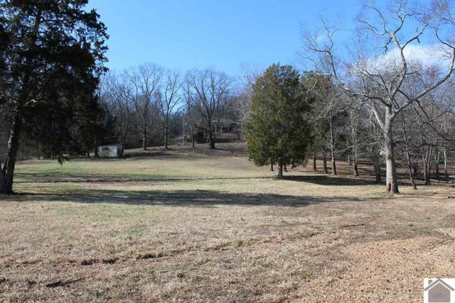 Lot 285 Lakeshore Drive, New Concord, KY 42076 (MLS #100352) :: The Vince Carter Team