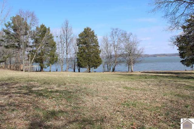 Lot 286 Lakeshore Drive, New Concord, KY 42076 (MLS #100353) :: The Vince Carter Team