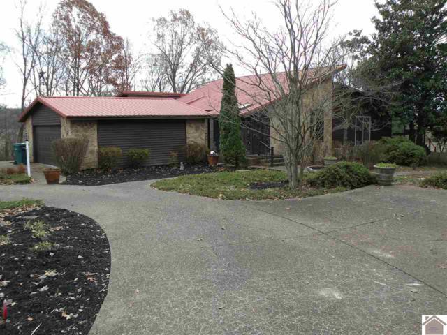 500 Dogwood Lane, Princeton, KY 42445 (MLS #100410) :: The Vince Carter Team