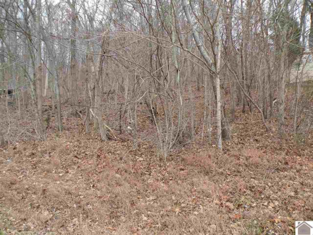 Lot 24 Oriole Dr, Eddyville, KY 42038 (MLS #100419) :: The Vince Carter Team