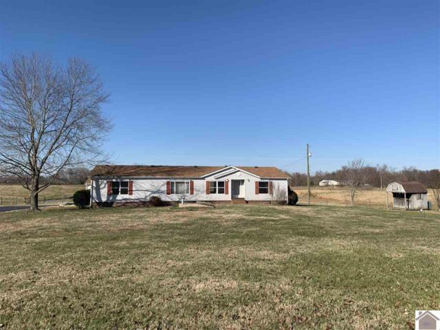 329 Redbud Road, Dexter, KY 42036 (MLS #100500) :: The Vince Carter Team