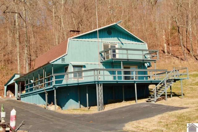 118 Holly Lane, Kuttawa, KY 42055 (MLS #100848) :: The Vince Carter Team