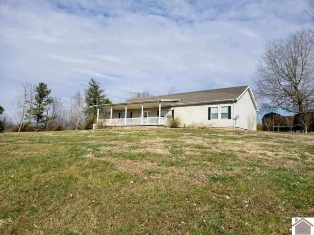 709 Guess Road, Smithland, KY 42081 (MLS #101056) :: The Vince Carter Team