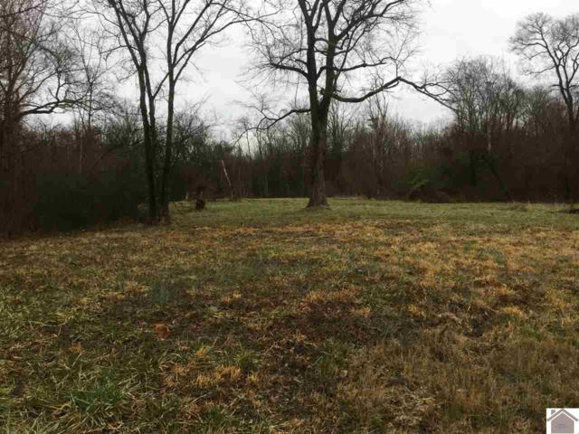 Boyds Landing Rd, Cadiz, KY 42211 (MLS #101096) :: The Vince Carter Team