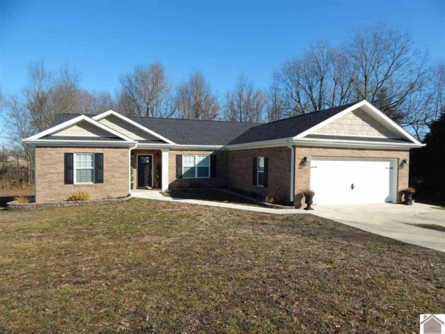 90 Abigayle Way, Hickory, KY 42051 (MLS #101198) :: The Vince Carter Team