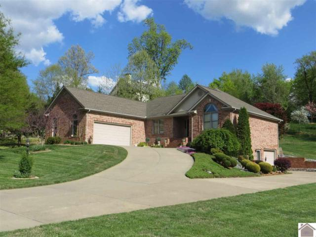 10 White Pine Place, Paducah, KY 42003 (MLS #101214) :: The Vince Carter Team
