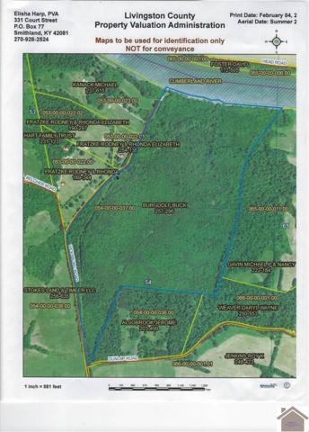 1001 Vicksburg Rd, Smithland, KY 42081 (MLS #101407) :: The Vince Carter Team