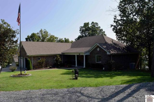 202 Wayne Circle, New Concord, KY 42076 (MLS #101568) :: The Vince Carter Team
