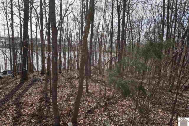 LOT 5 Wycliff Way, Eddyville, KY 42038 (MLS #101760) :: The Vince Carter Team