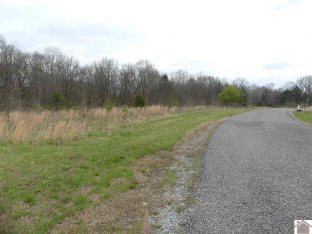 Lot #79B Waterfowl Road, Murray, KY 42071 (MLS #101963) :: The Vince Carter Team