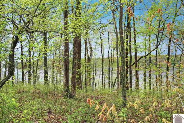 Lot 61 Dock Drive, Murray, KY 42071 (MLS #102245) :: The Vince Carter Team