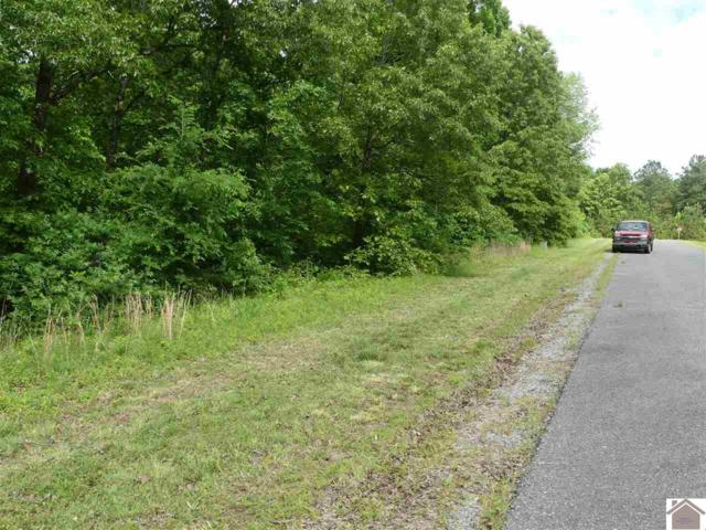 Lot #97 Pelican Lane, Murray, KY 42071 (MLS #102795) :: The Vince Carter Team