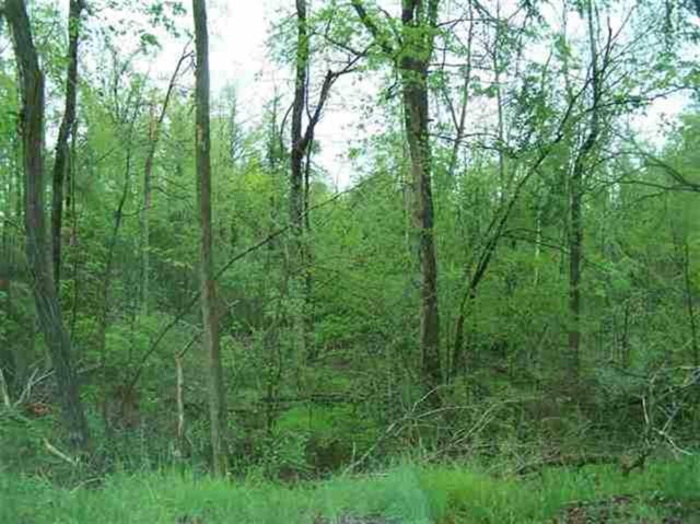 lot 4 Martin Chapel Road, Kuttawa, KY 42055 (MLS #73541) :: The Vince Carter Team