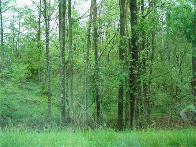lot 3 Martin Chapel Road, Kuttawa, KY 42055 (MLS #73542) :: The Vince Carter Team