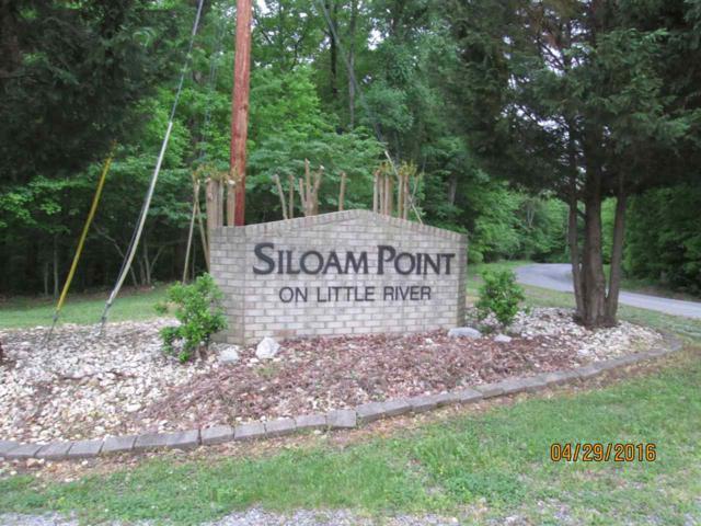#40 Siloam Point, Cadiz, KY 42211 (MLS #86781) :: The Vince Carter Team