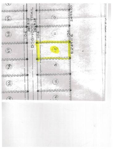 Dogwood Trail, Gilbertsville, KY 42044 (MLS #88702) :: The Vince Carter Team