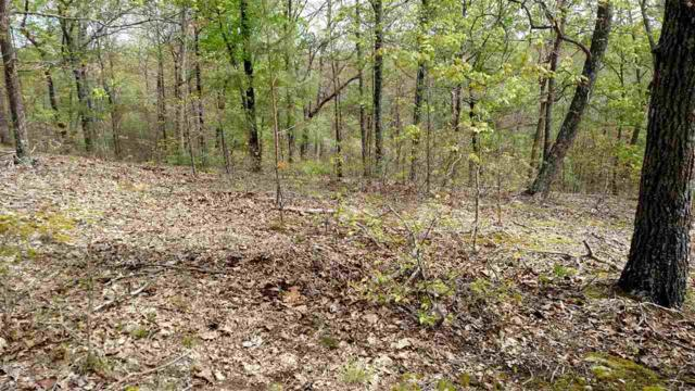 Lot 50 Patricia Drive, New Concord, KY 42076 (MLS #90711) :: The Vince Carter Team