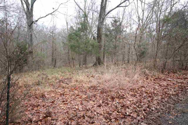 Lot #17 Lisa Court, New Concord, KY 42076 (MLS #91040) :: The Vince Carter Team