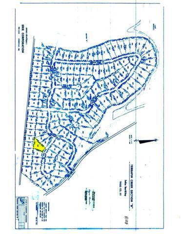 Lot 110B Terrapin Creek, Cadiz, KY 42211 (MLS #91392) :: The Vince Carter Team