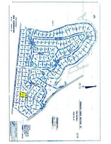 Lot 111B Terrapin Creek, Cadiz, KY 42211 (MLS #91393) :: The Vince Carter Team