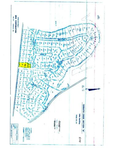 Lots 99B & 134B Terrapin Creek, Cadiz, KY 42211 (MLS #91410) :: The Vince Carter Team