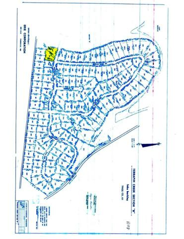 Lots 141B-142B Terrapin Creek, Cadiz, KY 42211 (MLS #91412) :: The Vince Carter Team