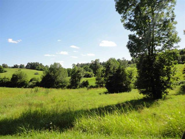 Lots 19-20 Rock Bowl Spring Ct, Kuttawa, KY 42055 (MLS #93022) :: The Vince Carter Team