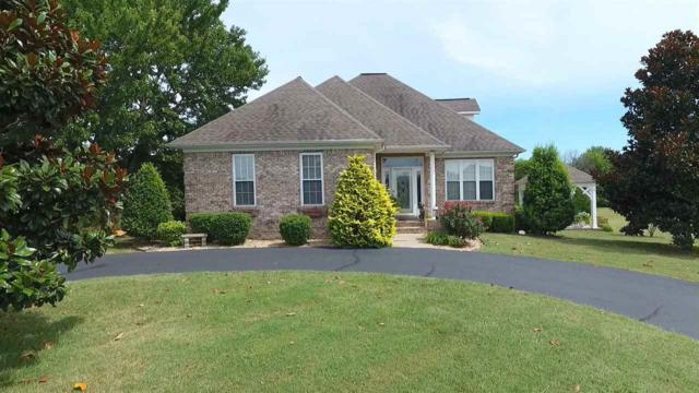 113 Clubhouse Drive, Ledbetter, KY 42058 (MLS #93542) :: The Vince Carter Team