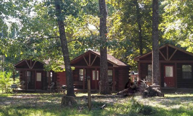 9 Lakeview Cabins Drive, New Concord, KY 42076 (MLS #95389) :: The Vince Carter Team
