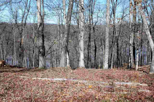 lot 4 Wooduck, Murray, KY 42071 (MLS #95972) :: The Vince Carter Team