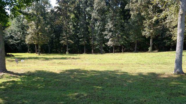 Lot 44 Bayridge Court, New Concord, KY 42076 (MLS #96005) :: The Vince Carter Team
