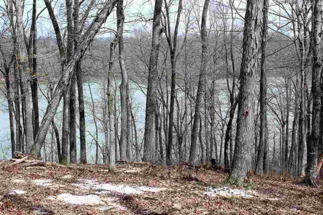 LOT 14 Waterfowl Ln, Murray, KY 42071 (MLS #96185) :: The Vince Carter Team