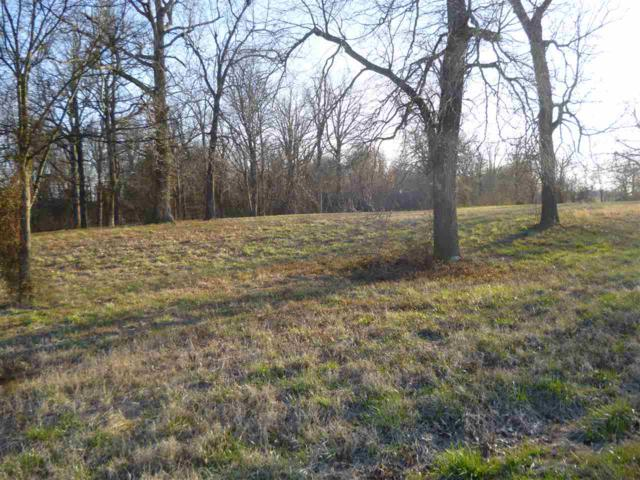 10303 Wickliffe Rd, LaCenter, KY 42056 (MLS #96307) :: The Vince Carter Team