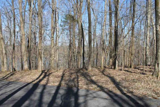Lot 3 Holiday Acres, Eddyville, KY 42038 (MLS #96403) :: The Vince Carter Team