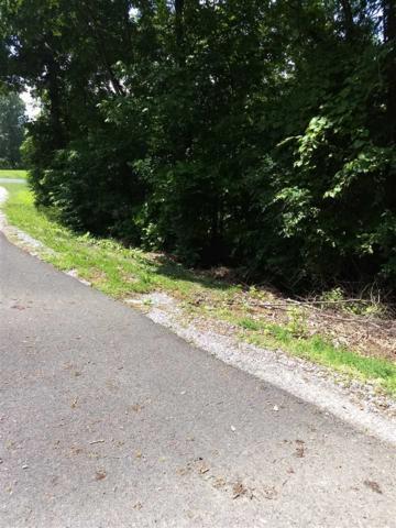 000 Autumn Lane, Gilbertsville, KY 42044 (MLS #97332) :: The Vince Carter Team
