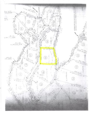 Lot 45 Bayridge Road, New Concord, KY 42076 (MLS #97380) :: The Vince Carter Team
