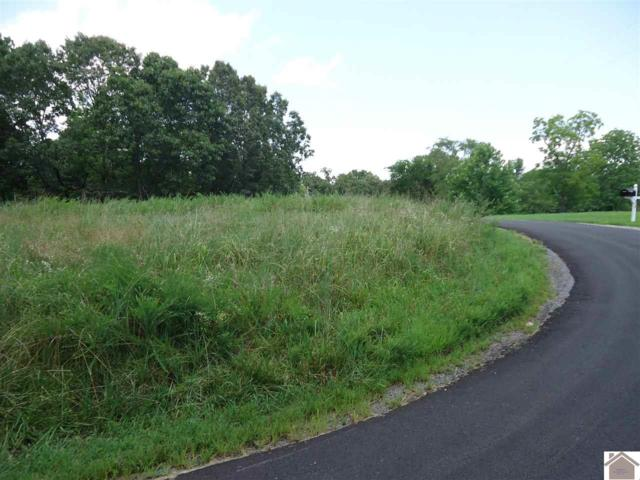 269 Mallory Cemetary Road, New Concord, KY 42025 (MLS #98632) :: The Vince Carter Team