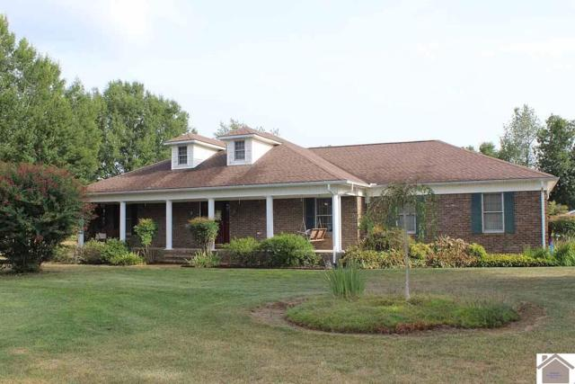 253 Stoneside Drive, Almo, KY 42020 (MLS #99031) :: The Vince Carter Team