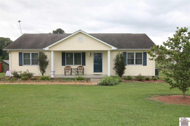 117 Lake Scene Road, Eddyville, KY 42038 (MLS #99086) :: The Vince Carter Team