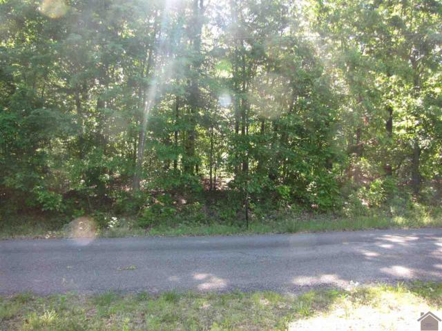 550 Estates Drive, Gilbertsville, KY 42044 (MLS #99190) :: The Vince Carter Team