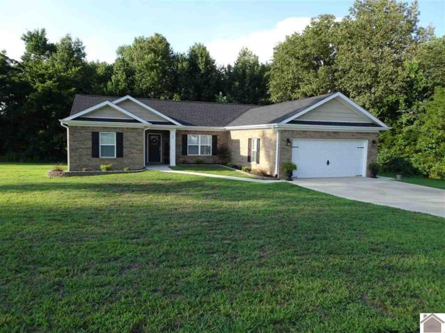 90 Abigayle Way, Hickory, KY 42051 (MLS #99252) :: The Vince Carter Team
